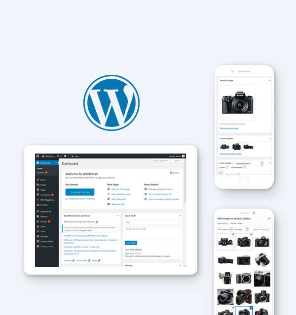 Wordpress Design and Development Malaysia